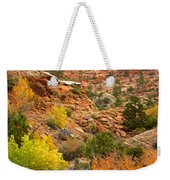 Rough Terrain In Autumn Along Zion-mount Carmel Highway In Zion Np-ut Weekender Tote Bag