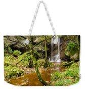 Roughting Linn Waterfall Weekender Tote Bag