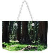 Round Meadow Sequoia Family Weekender Tote Bag