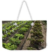 Rows Of Kale Weekender Tote Bag