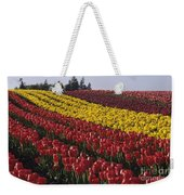 Rows Of Multicolored Tulips In Field Mount Vernon Washington Sta Weekender Tote Bag