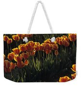 Rows Of Orange Tulips In Field Mount Vernon Washington State Usa Weekender Tote Bag