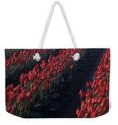 Rows Of Red Tulips Weekender Tote Bag