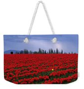 Rows Of Red Tulips With One Yellow Tulip  Weekender Tote Bag by Jim Corwin