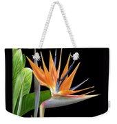 Royal Beauty I - Bird Of Paradise Weekender Tote Bag by Ben and Raisa Gertsberg