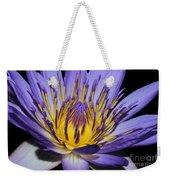 Royal Purple Water Lily #5 Weekender Tote Bag