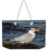Royal Tern Weekender Tote Bag