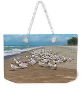 Royal Terns On The Beach Weekender Tote Bag