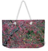 Ruby Lattice Weekender Tote Bag