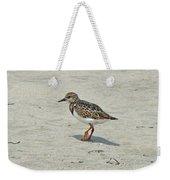 Ruddy Turnstone Wading Bird - Arenaria Interpres Weekender Tote Bag