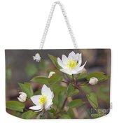 Rue Anemone Wildflower - Pale Pink - Thalictrum Thalictroides Weekender Tote Bag