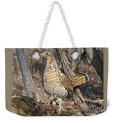 Ruffed Grouse On Mossy Log Weekender Tote Bag