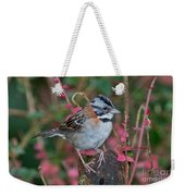 Rufous-collared Sparrow Weekender Tote Bag