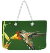 Rufous Hummingbird At Tiger Lily Weekender Tote Bag