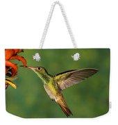 Rufous Hummingbird Feeding Weekender Tote Bag