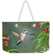 Rufous Hummingbird Female At Monkey Weekender Tote Bag