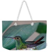Rufous-tailed Hummingbird On Nest Weekender Tote Bag