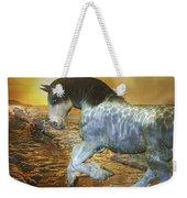 Run With Me Sunrise Weekender Tote Bag by Betsy Knapp