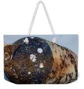 Rusted Buoy Weekender Tote Bag