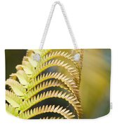 Sadleria Cyatheoides Amau Fern Maui Hawaii Weekender Tote Bag