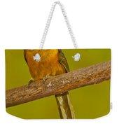 Saffron Toucanet Weekender Tote Bag