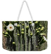 Saguaro In Bloom Weekender Tote Bag
