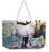 Sally's Horses Weekender Tote Bag