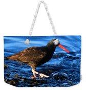 Salt Creek Catcher Weekender Tote Bag