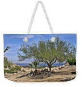 Salton Sea Oasis Weekender Tote Bag