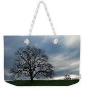 Same Tree Many Skies 10 Weekender Tote Bag
