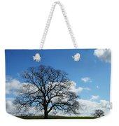 Same Tree Many Skies 11 Weekender Tote Bag