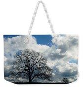 Same Tree Many Skies 13 Weekender Tote Bag