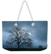 Same Tree Many Skies 14 Weekender Tote Bag
