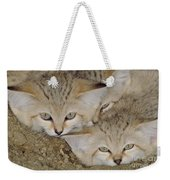 Sand Cat Felis Margarita Weekender Tote Bag