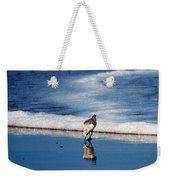 Sanderling 003 Weekender Tote Bag