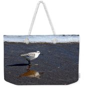 Sanderling 004 Weekender Tote Bag
