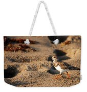 Sanderling 005 Weekender Tote Bag