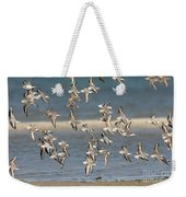 Sanderlings And Dunlins In Flight Weekender Tote Bag