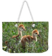 Sandhill Chicks Weekender Tote Bag