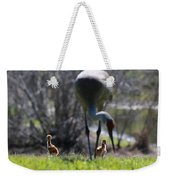 Sandhill Chicks Under Foot Weekender Tote Bag