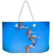 Sandhill Crane 10 Weekender Tote Bag