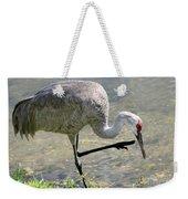 Sandhill Crane Balancing On One Leg Weekender Tote Bag by Sabrina L Ryan