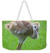 Sandhill Crane Chick I Weekender Tote Bag