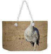Sandhill Crane In The Spotlight Weekender Tote Bag