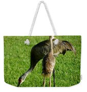 Sandhill Crane With Chick II Weekender Tote Bag