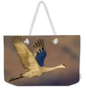 Sandhill Crane Young Adult Weekender Tote Bag