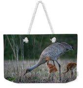 Sandhill Cranes 2 Weekender Tote Bag