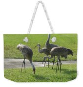 Sandhill Cranes Family Weekender Tote Bag by Zina Stromberg