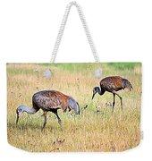 Sandhill Cranes Ll Weekender Tote Bag