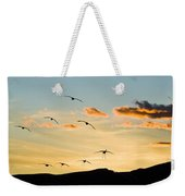 Sandhill Cranes In New Mexico Weekender Tote Bag